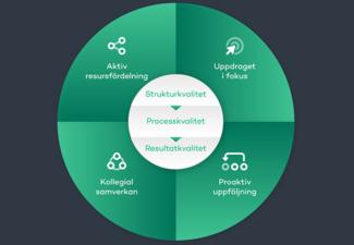 Bild på AcadeMediamodellen. En grön cirkel med olika kategorier.