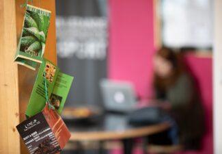 Gymnasieskolor i Malmö deltar i Närvarolyftet